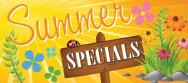The Summer Specials banner